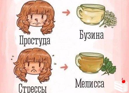 Отвары и чаи