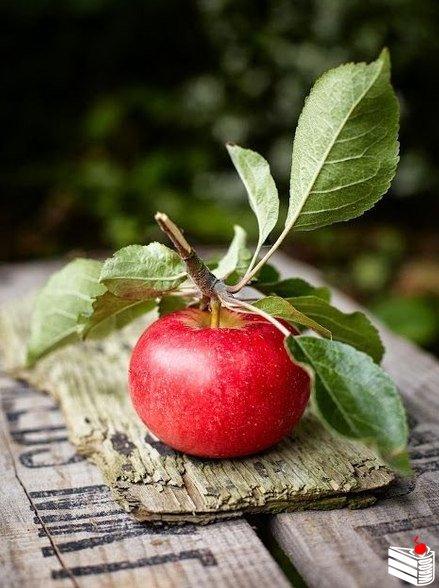 """Яблочный пирог """"Янтарный лучик""""."""