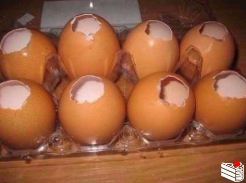 Заливные яйца.