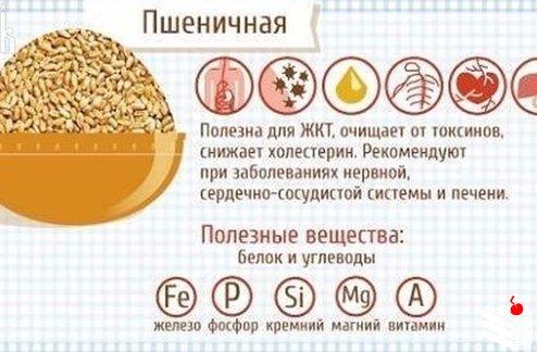 Полезные свойства каш