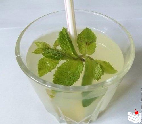 1463980874_Myatnyiy-limonad