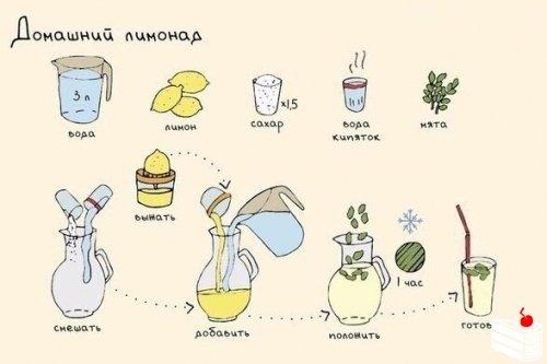 Лето не за горами, а свежий и вкусный лимонад всегда будет кстати.