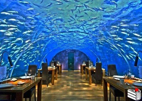 """Уникальный подводный ресторан """"Ithaa"""" на Мальдивах."""