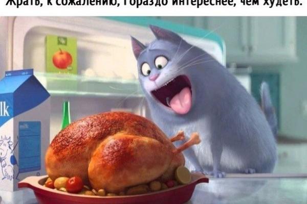 ТОП-5 УЖИНОВ С КУРИНОЙ ГРУДКОЙ